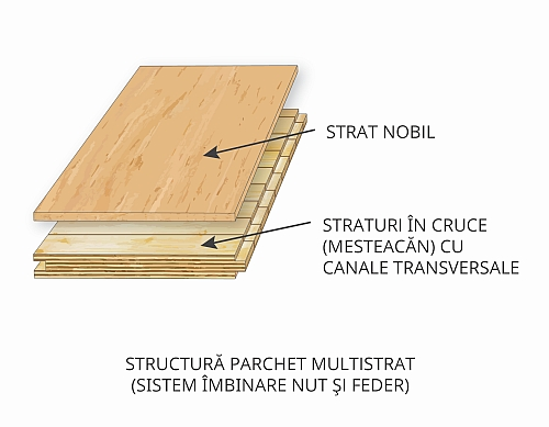 Structura parchet multistrat