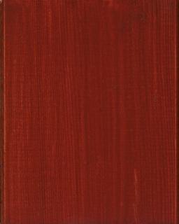 Lac terasa lemn, la exterior, DeckFinish Color, LOBA - Maro roscat (cod: L800099) 2