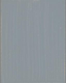 Lac terasa lemn, la exterior, DeckFinish Color, LOBA - Gri (cod: L900148) 2